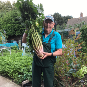 An elderly man standing in a garden, wearing overalls, holding a very large bunch of celery.